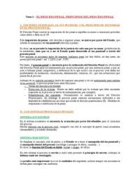 APUNTES: Derecho Procesal Penal