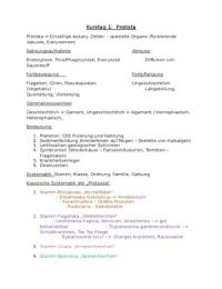 VORLESUNGSMITSCHRIFT: Zusammenfassungen des Lernstoffs für Organisationsformen im Tierreich