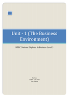 unit 1 the business environment 3 Essay of 3 pages for the course unit 1 - the business environment at havering college of further and higher education ( (unit m3).