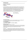 SAMENVATTING: THK 1 Röntgenologie