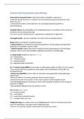 SAMENVATTING: Samenvatting kostencalculaties